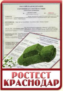 Экологический сертификат Евро-4
